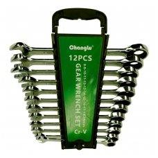 Combination gear wrenches set 12pcs. (8-19)