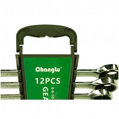 Kombinuotų raktų su terkšle rinkinys 12vnt. (8-19) 2